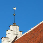 Vintage golden Dove weather vane above blue sky. Old part of Tallinn, Estonia — Stock Photo