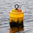 Small Yellow cylindrical mooring buoy — 图库照片