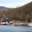 Traditional small Norwegian village with red wooden houses and small fishing boat nearby — Stock Photo
