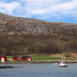 Traditional small Norwegian village with red wooden houses on rocky coast and small fishing boat nearby — Stock Photo