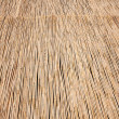 Natural dry thatch background texture — Stock Photo