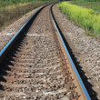 Railway perspective with green grass on sides — Stockfoto