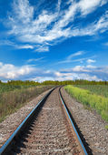 Railway perspective with green grass and blue cloudy sky — Stock fotografie