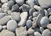 Dry coastal gray stones background — Foto Stock
