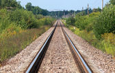 Straight railway perspective with poles, green grass and blue sky — Stock Photo