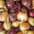Raw red and white onion on the counter — Stock Photo