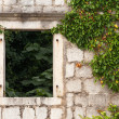 Abandoned house fragment. Ancient stone wall with empty window and plants. Perast town, Montenegro — Stock fotografie