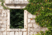 Abandoned house fragment. Ancient stone wall with empty window and plants. Perast town, Montenegro — Stock Photo