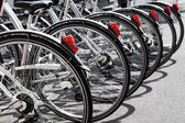 Bicycles stand in a row on a parking for rent — Stock Photo