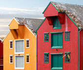 Red and yellow coastal wooden houses in Norway with seagulls nests on roofs — Stock Photo