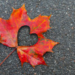 Fall in love photo metaphor. Red maple leaf with heart shaped hole lays on dark asphalt road — Stock Photo