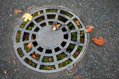 Round sewer manhole on dark asphalt with autumnal leaves and green grass inside — Foto Stock