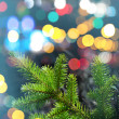 Fir tree branch closeup photo with colorful lights bokeh — Stock Photo