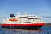 Große norwegische passagierschiff kreuzfahrt geht auf dem fjord — Stockfoto