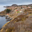 Traditional coastal Norwegian village with colorful wooden houses — Stock Photo