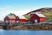 Traditional Norwegian coastal village with red wooden houses — Stock Photo