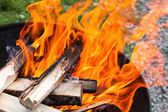 Closeup photo of natural big bbq fire — Stock Photo