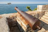 Old cannon in coastal Venetian fortress Castello. Petrovac, Mont — Stock Photo