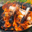 Closeup photo of natural big bbq fire on wood — Foto de Stock