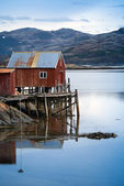 Red wooden house on the sea coast in Norway — Stok fotoğraf