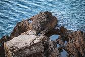 Dark coastal rocks on Adriatic Sea in Montenegro — Stock Photo