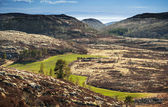 Spring Norwegian landscape with mountains and green field — Stock Photo