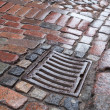 Wet drainage cover on stone pavement of urbroad — Stock Photo #38437369