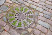 Round sewer manhole on stone pavement with green grass inside — Stock Photo