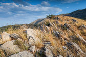 Montenegro. Mountain landscape with dry grass growing on the rock — Stock Photo