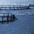 Round cages of Norwegian fish farm for salmon growing — Stock Photo #40133595