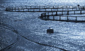 Round cages of fish farm for salmon growing in Norway — Stock Photo