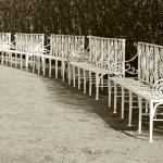 White park benches in the row. Retro stylized photo — Stock Photo