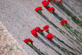 Red carnations lie on granite of monument to soldiers — Stock Photo
