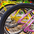 Colorful bicycles stand in row on a parking lot for rent — Stock Photo #47444801