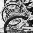 Bicycles for rent stand in row on a parking lot — Stock Photo #47598437