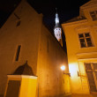 Old Tallinn, Estonia. Dark street with lights at night — Stock Photo #48305061