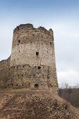 Tower of Koporye Fortress — ストック写真