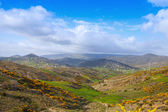 Panoramic summer mountain landscape of Tangier region, Morocco — Stock Photo