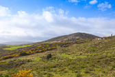 Summer landscape, mountains in Tangier region, Morocco — Stock Photo
