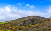 Panoramic mountain landscape of Tangier region, Morocco — Stock Photo
