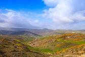 Summer mountain landscape of Tangier region, Morocco — Stock Photo