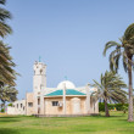 Modern mosque and palms in Rahima, Saudi Arabia — Foto Stock #50790369