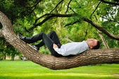 Man lying on the tree — Stock Photo