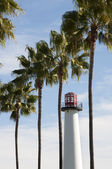 Lighthouse and palms — Stock Photo