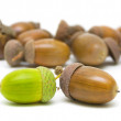 Acorns of different colors on a white background — Stock Photo #13519521
