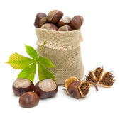 Bag with ripe chestnuts and leaves on a white background — Stock Photo
