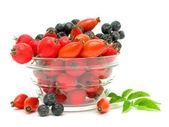 玫瑰果、 山楂、 苦莓在白色背景上 — 图库照片