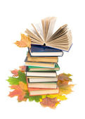 Autumn leaves and books. vertical photo. — Stok fotoğraf