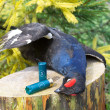 Hunting trophy - the black grouse and ammunition for hunting rif - Stock Photo
