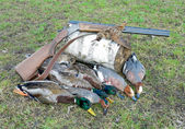 Trophy hunter. ducks, woodcock and hunting rifle. — Stock Photo